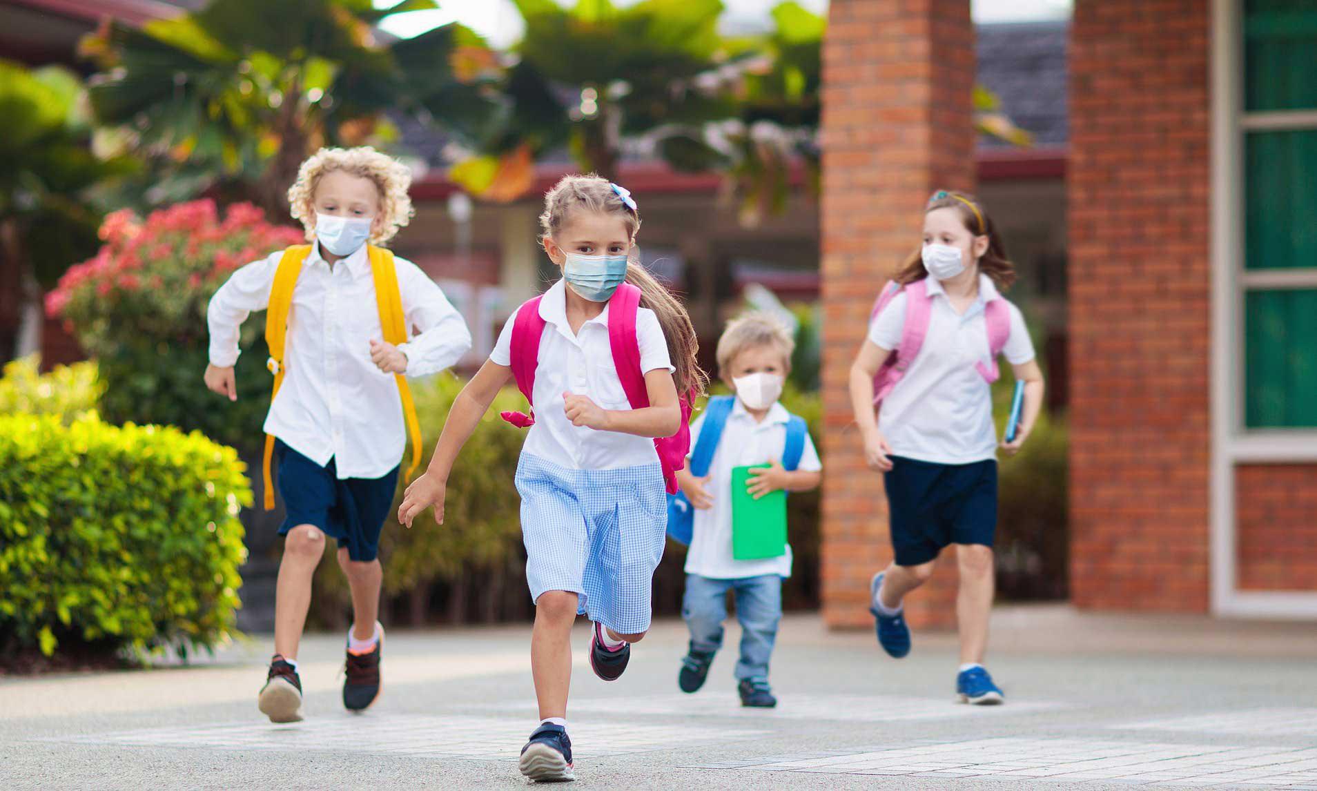 Posibilă schimbare a structurii anului școlar: trimestre în loc de semestre și vacanță de vară mai scurtă